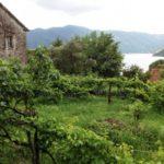 Уютный домик в Черногории